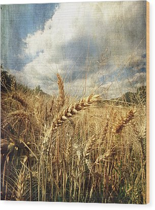 Ears Of Corn Wood Print