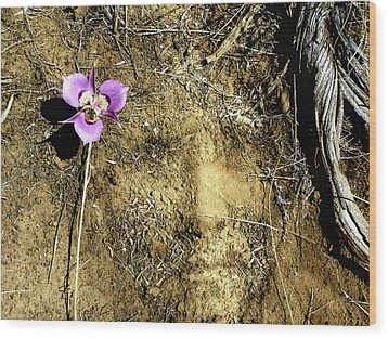 Wood Print featuring the photograph Earth Memories - Desert Flower # 2 by Ed Hall