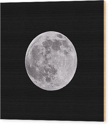Earth's Moon Wood Print by Steve Gadomski
