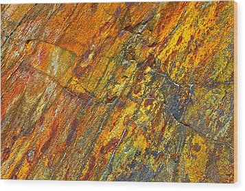 Earths Palette Wood Print by Karon Melillo DeVega