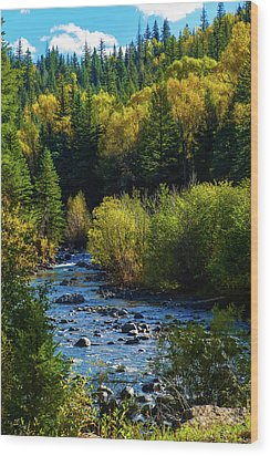 East Fork Autumn Wood Print