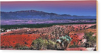 East Of Albuquerque Wood Print by David Patterson