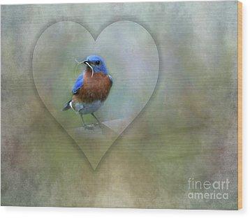 Eastern Bluebird Wood Print by Brenda Bostic