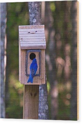 Eastern Bluebird Entering Home Wood Print by Douglas Barnett