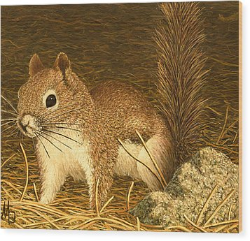 Eastern Pine Squirrel Wood Print