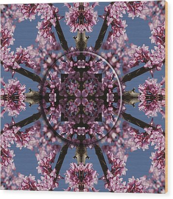 Eastern Red Bud Mandala Wood Print by Alan Skonieczny