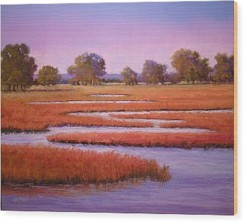 Eastern Shore Marsh Wood Print by Paula Ann Ford