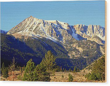 Wood Print featuring the photograph Eastern Sierras by Lynn Bawden