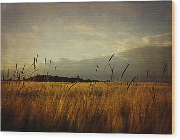 Wood Print featuring the photograph Eastern Wheat by Gary Smith