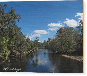 Wood Print featuring the photograph Econlockhatchee River by Barbara Bowen