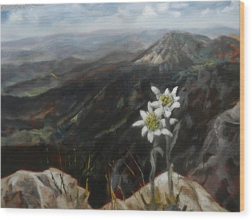 Edelweiss Moment Wood Print
