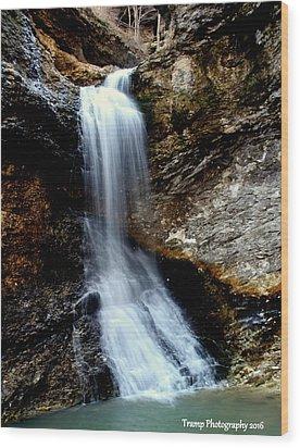 Eden Falls Wood Print