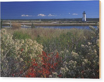 Edgartown Lighthouse Autumn Flowers Wood Print by John Burk