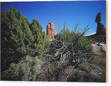Edge Of Life Arches Wood Print by Lawrence Christopher