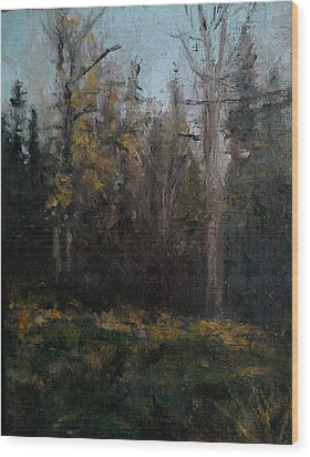 Edge Of The Woods #1 Wood Print by Brian Kardell