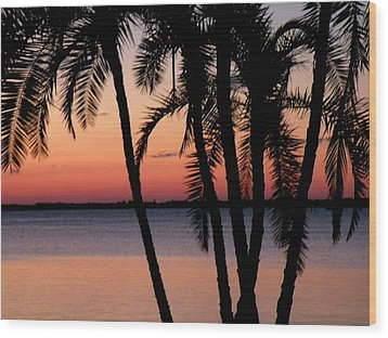 Wood Print featuring the photograph Edison Sunset by Rosalie Scanlon