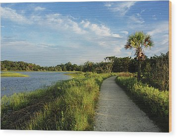 Wood Print featuring the photograph Edisto by Jessica Brawley