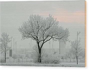 Eerie Days Wood Print by Christine Till