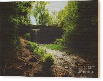 Wood Print featuring the photograph Eerie Path At Wequiock Falls by Mark David Zahn
