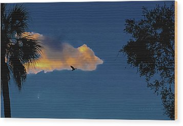 Egressing Egret Wood Print by DigiArt Diaries by Vicky B Fuller