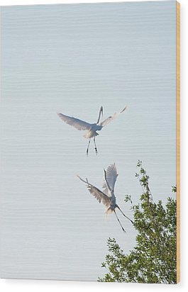 Egret Dance Wood Print by Catherine Lau