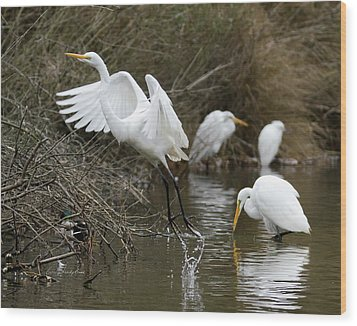 Wood Print featuring the photograph Egret Exit by George Randy Bass