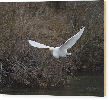 Egret In Flight Wood Print by George Randy Bass