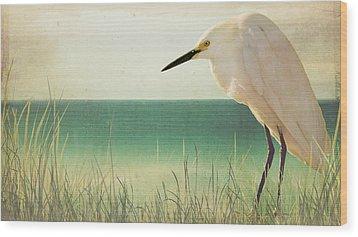 Egret In Morning Light Wood Print