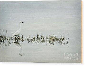 Egret Wood Print by Jim  Calarese