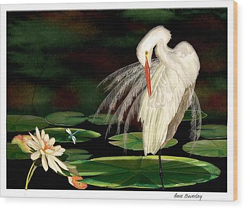 Wood Print featuring the painting Egret Pruning In Lily Pads by Anne Beverley-Stamps