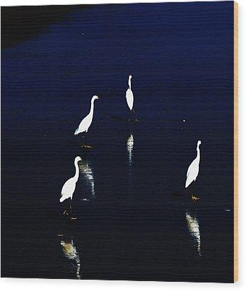 Egret Reflections Wood Print by David Lane