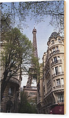 Wood Print featuring the photograph Eiffel Tower 2b by Andrew Fare