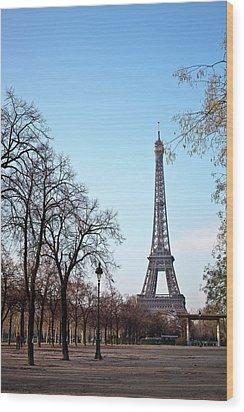 Eiffel Tower In Paris Wood Print by Tuan Tran