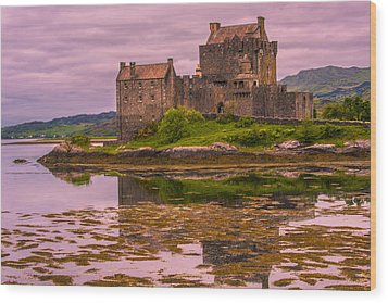 Wood Print featuring the photograph Eilean Donan Castle I by Steven Ainsworth