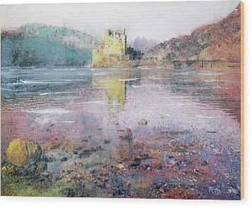 Eilean Donan Castle  Wood Print by Richard James Digance