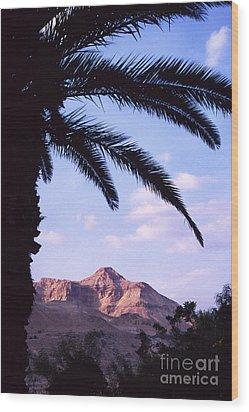 Ein Gedi Oasis Wood Print by Thomas R Fletcher