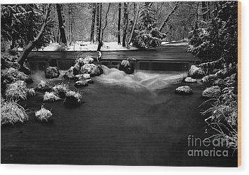 Eisbach In The Winter Wood Print by Hannes Cmarits