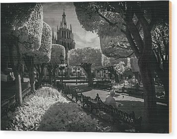 Wood Print featuring the photograph el Jardin by Sean Foster