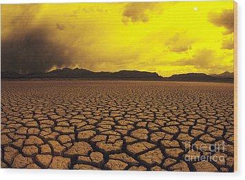 El Mirage Desert Wood Print by Larry Dale Gordon - Printscapes