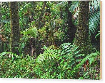 El Yunque Lush Vegetation Wood Print by Thomas R Fletcher