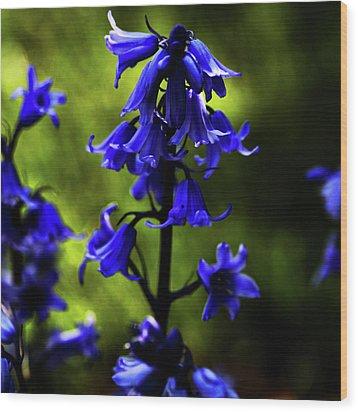 Electric Blue Wood Print by Bonnie Bruno