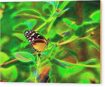 Electric Butterfly Wood Print by James Steele