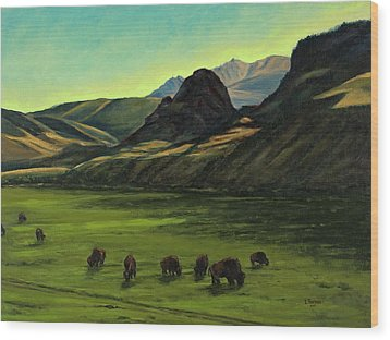 Electric Peak From Slip And Slide Ranch Wood Print