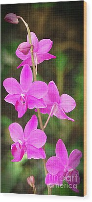 Elegance In Nature Wood Print by Sue Melvin