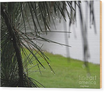 Wood Print featuring the photograph Elements by Greg Patzer