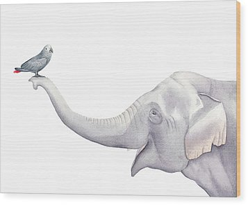 Elephant And Bird Watercolor Wood Print by Taylan Apukovska