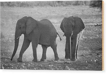 Elephant Buddies - Black And White Wood Print by Nancy D Hall