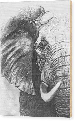 Elephant For Alabama  Wood Print