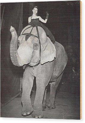Wood Print featuring the photograph Elephant Girl by Judyann Matthews