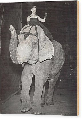 Elephant Girl Wood Print by Judyann Matthews